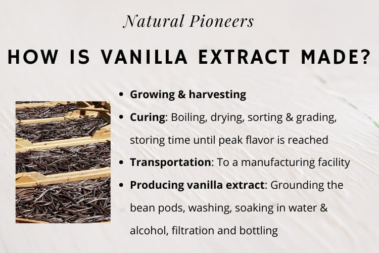 Natural Pioneers Is Pure Vanilla Extract Keto Friendly How is vanilla extract made