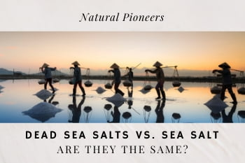 Thumbnail Natural Pioneers Dead Sea salts vs Sea salt Are they the same difference