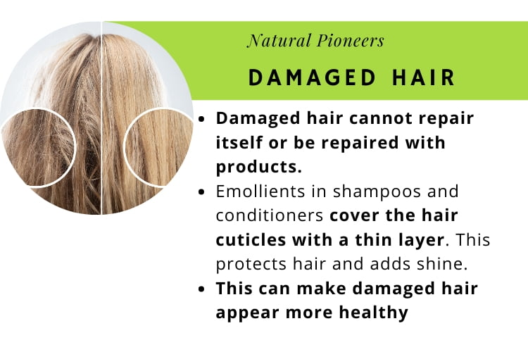 Natural Pioneers Is natural shampoo really better damaged hair