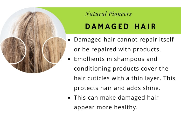 Is Detangler And Leave-In Conditioner The Same damaged hair cannot repair itself