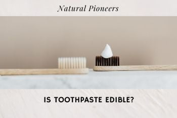 Thumbnail Natural Pioneers Is toothpaste edible